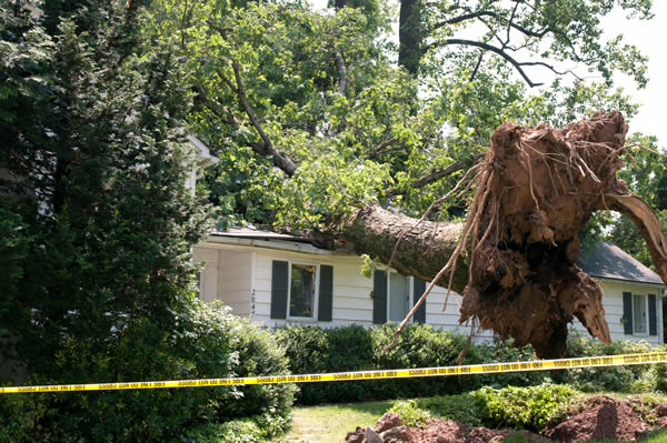 Rochester Mn Storm Damage Repair All Craft Exteriors